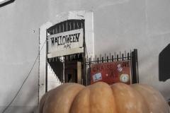 Halloween à APE Maternelle1
