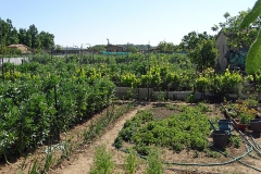 02_les jardins familiaux