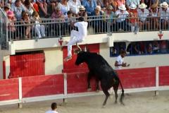 06-Landié (Nicollin) sur Cadenas