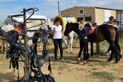 Fête nationale du Cheval Écuries du vieux Mas