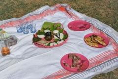 journée à l'ancienne déjeuner sur l'herbe