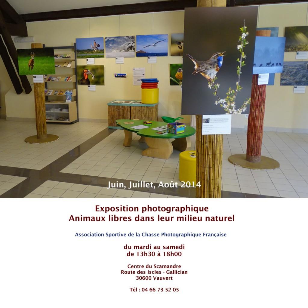 "<span style=""color:#e80014; font-weight:bold;"">Expo photographique<br />Animaux libres</span><br /><span style=""font-style:italic;"">Centre du Scamandre<br />du 1er juin au 31 août"