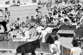 Tégel su César à Pérols en 1973 Photo © Robert Faure