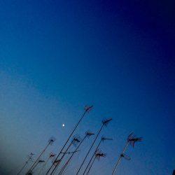 04_Photo JOL