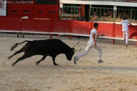 course-taureau-jeun18-(16)