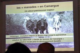 04_AG_Amis de la manade Blatière_Bessac