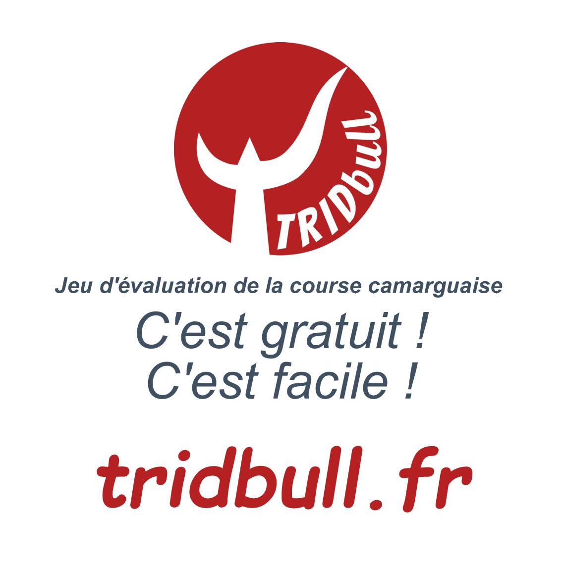 Tridbull, le jeu dévaluation sur la course camarguaise
