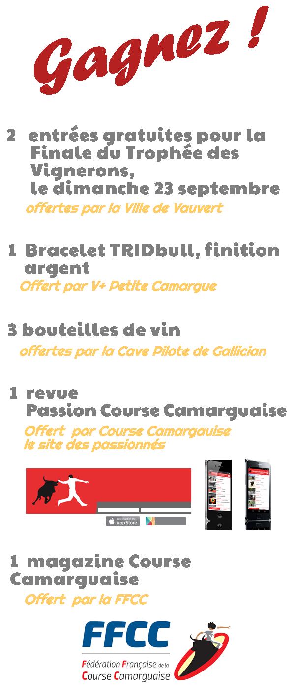 Vauvert + Petite Camargue